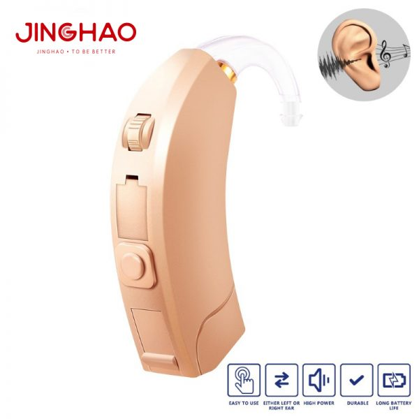 D10-programmable hearing aid