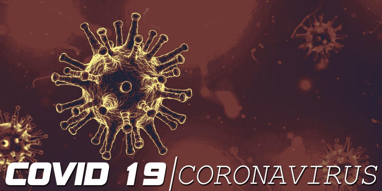COVID-7 স্বাস্থ্য জরুরী অবস্থার প্রতিক্রিয়া জানিয়ে অডিওলজিস্টদের জন্য 19 টিপস